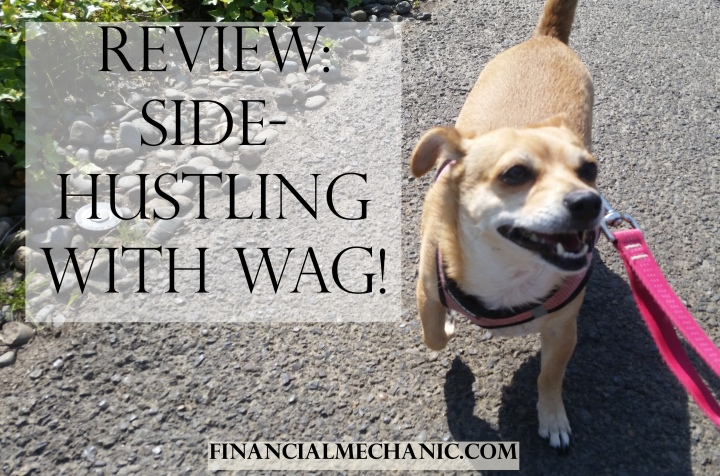 Review: Side-Hustling with Wag!