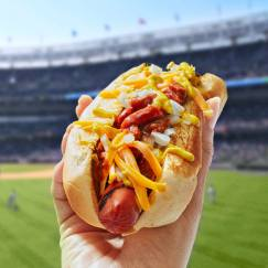 cheese-coney-dog-0817-103041220.jpg