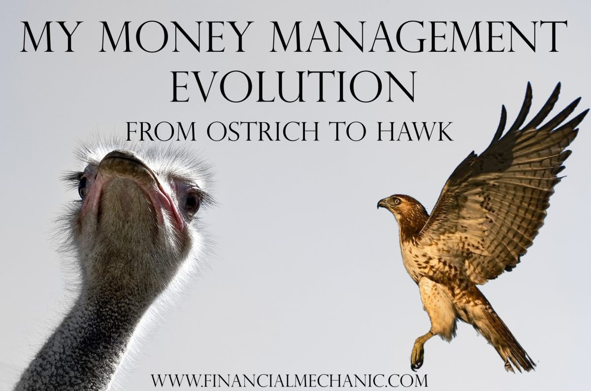 Ostrich to Hawk: My Money Management Evolution